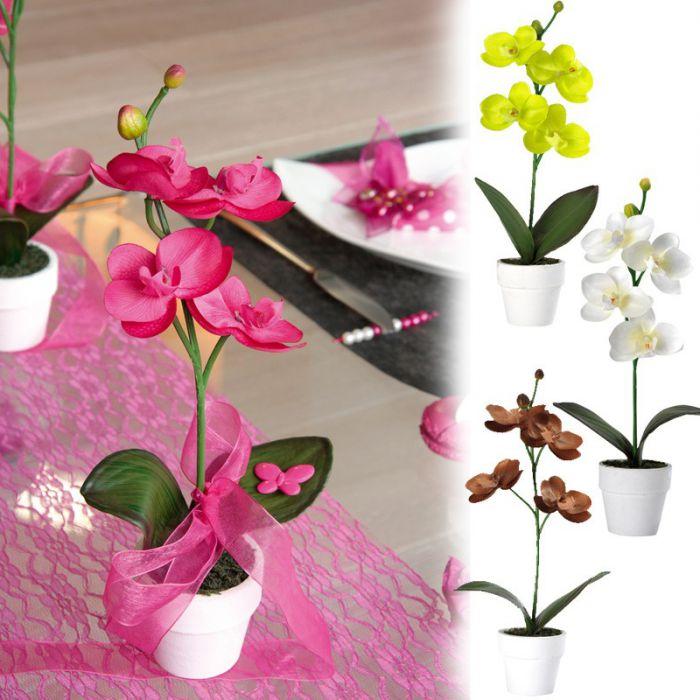 Plante orchid e d co de table - Deco mariage orchidee ...