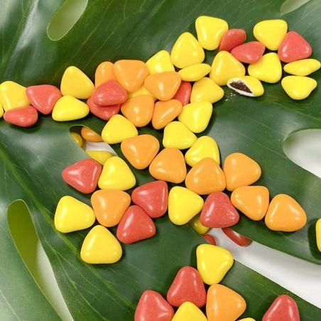 Dragées Coeurs chocolat thème Boisé - 500gr